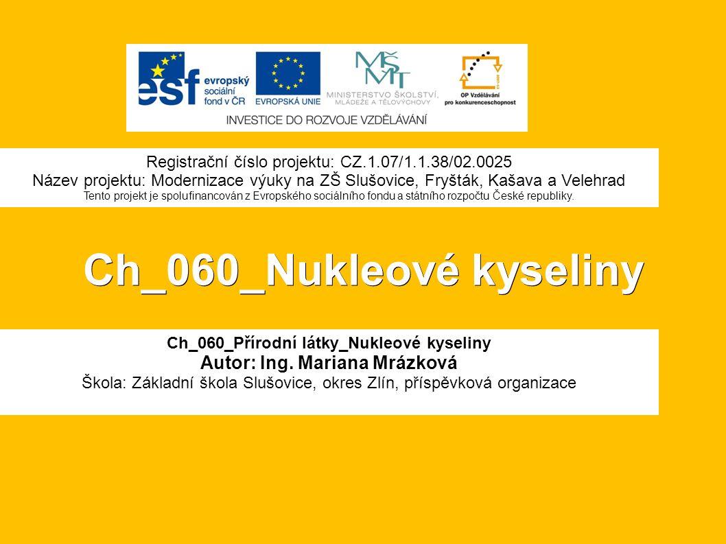 Ch_060_Nukleové kyseliny Ch_060_Přírodní látky_Nukleové kyseliny Autor: Ing.