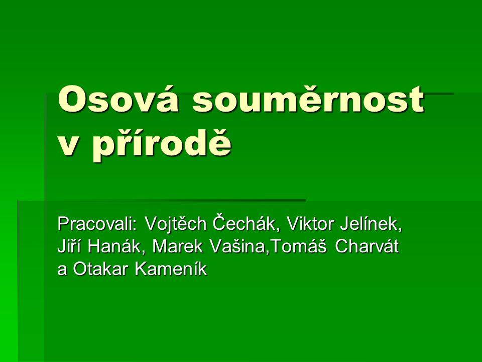 Osová souměrnost v přírodě Pracovali: Vojtěch Čechák, Viktor Jelínek, Jiří Hanák, Marek Vašina,Tomáš Charvát a Otakar Kameník