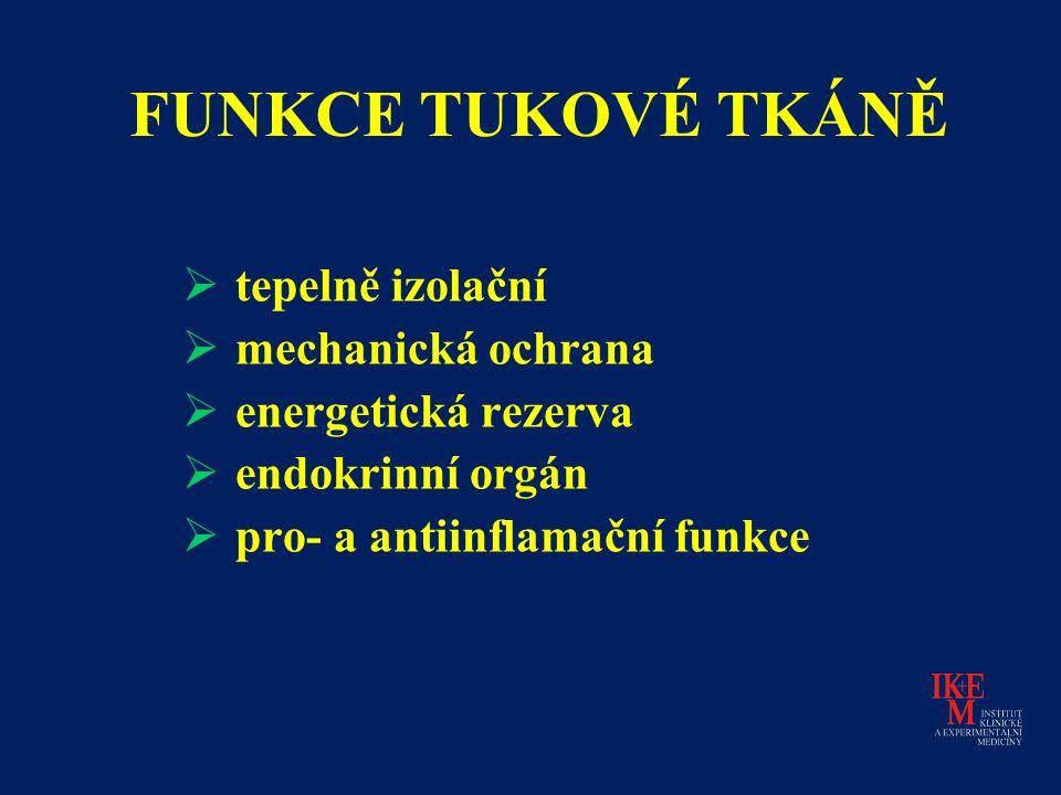 FUNKCE TUKOVÉ TKÁNĚ  tepelně izolační  mechanická ochrana  energetická rezerva  endokrinní orgán  pro- a antiinflamační funkce