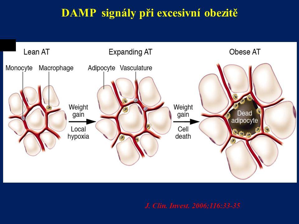 DAMP signály při excesivní obezitě J. Clin. Invest. 2006;116:33-35