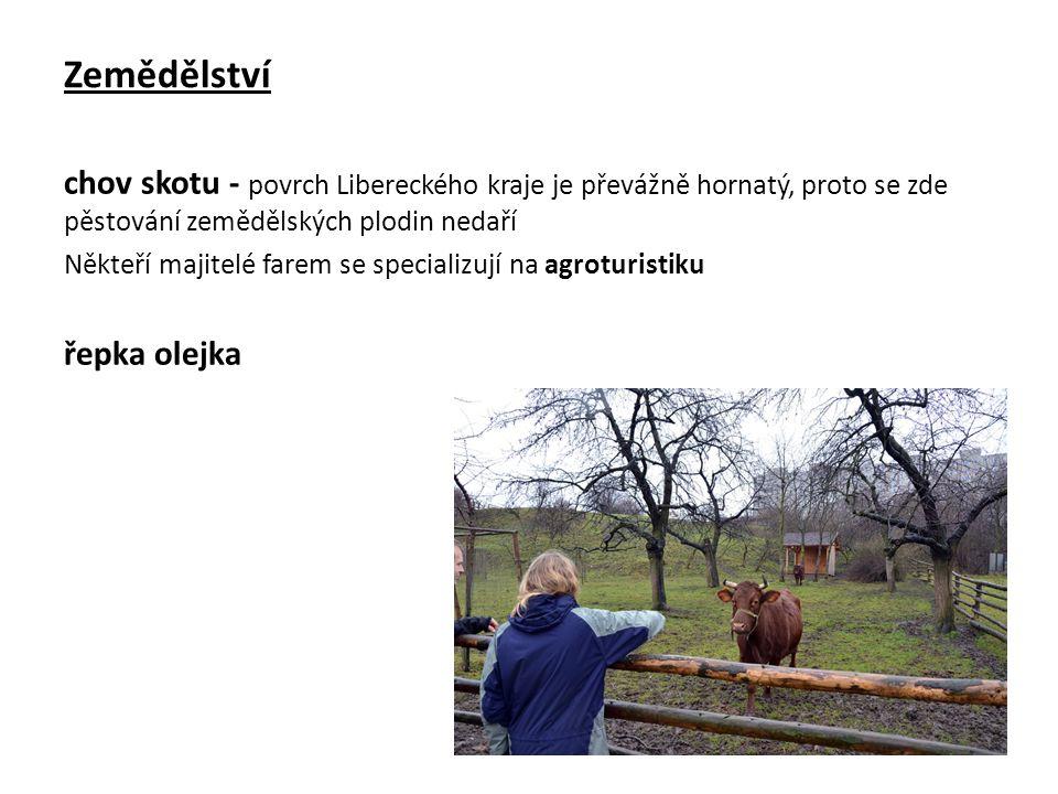 Zemědělství chov skotu - povrch Libereckého kraje je převážně hornatý, proto se zde pěstování zemědělských plodin nedaří Někteří majitelé farem se specializují na agroturistiku řepka olejka