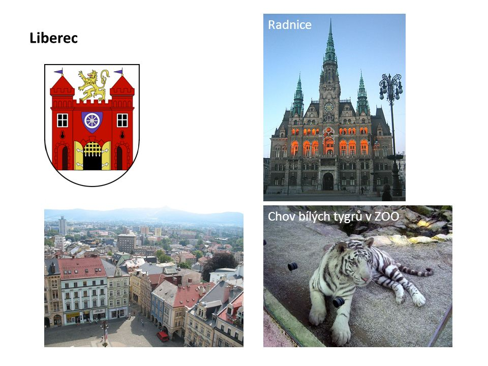 Liberec Radnice Chov bílých tygrů v ZOO