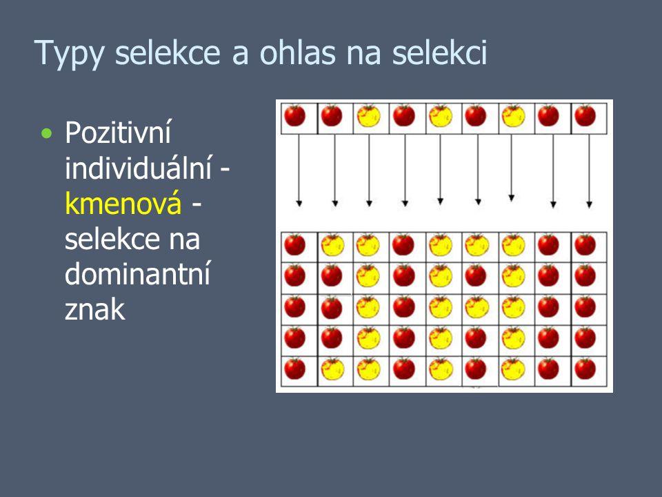 Typy selekce a ohlas na selekci Pozitivní individuální - kmenová - selekce na dominantní znak