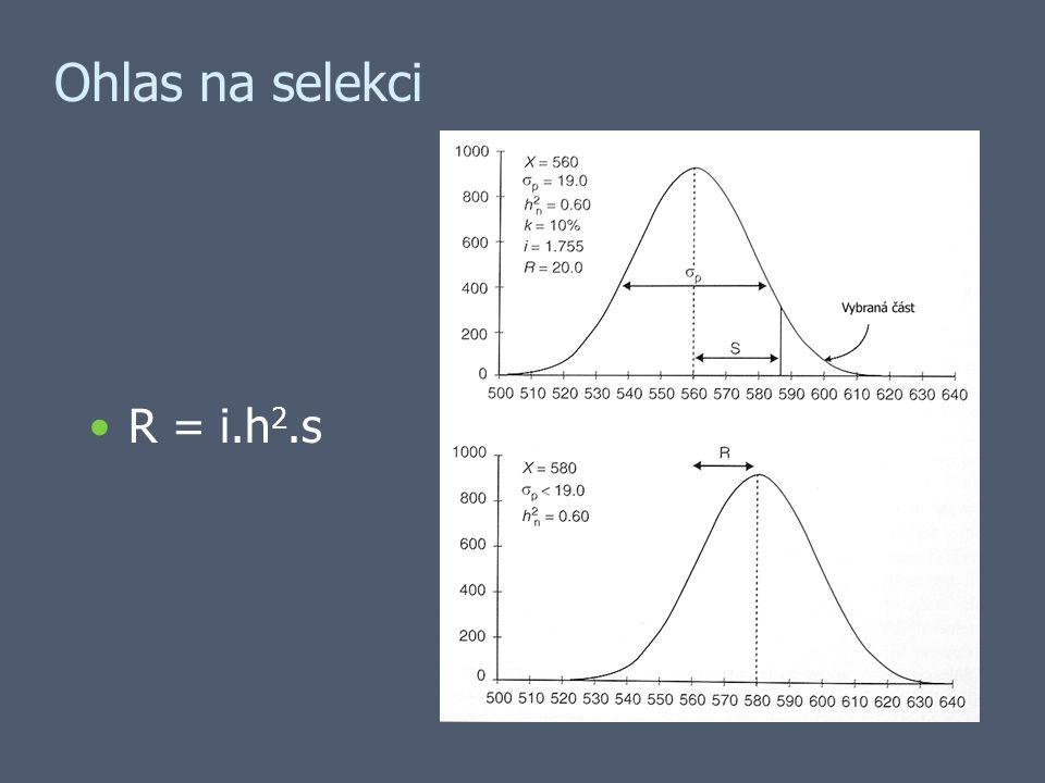 Ohlas na selekci R = i.h 2.s