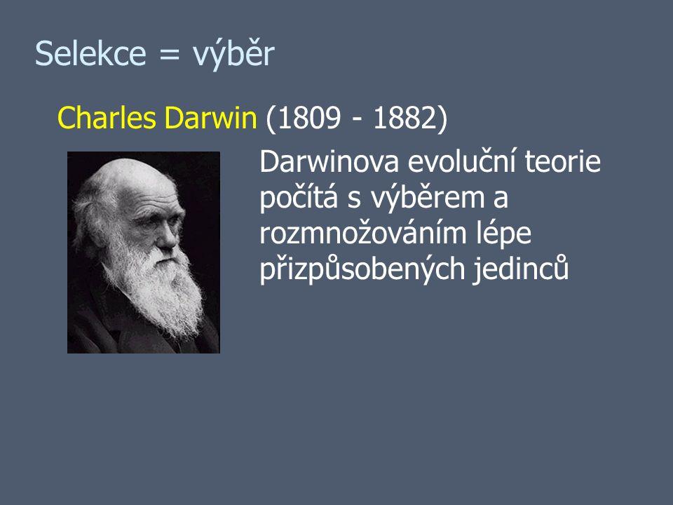 Selekce = výběr Charles Darwin (1809 - 1882) Darwinova evoluční teorie počítá s výběrem a rozmnožováním lépe přizpůsobených jedinců