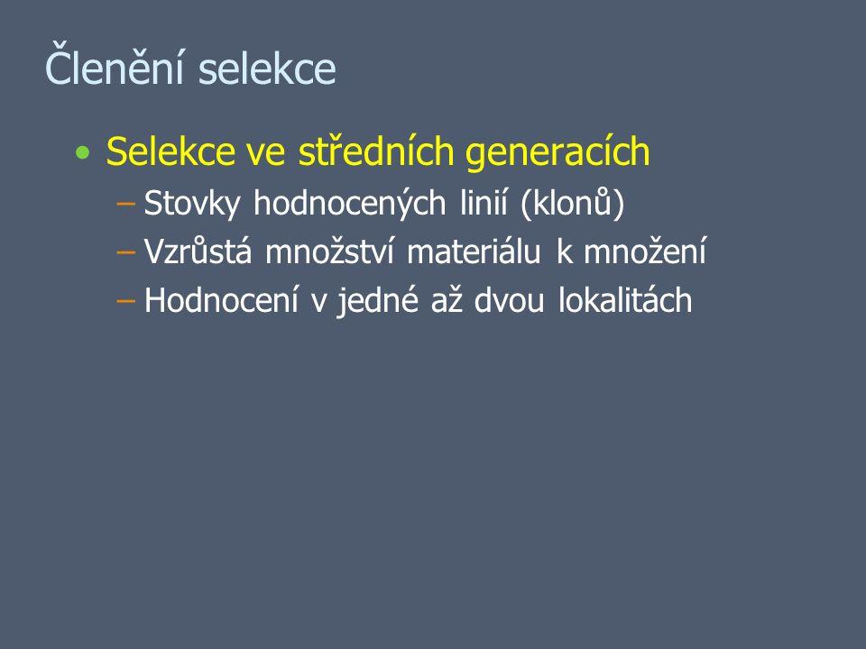 Členění selekce Selekce ve středních generacích –Stovky hodnocených linií (klonů) –Vzrůstá množství materiálu k množení –Hodnocení v jedné až dvou lokalitách