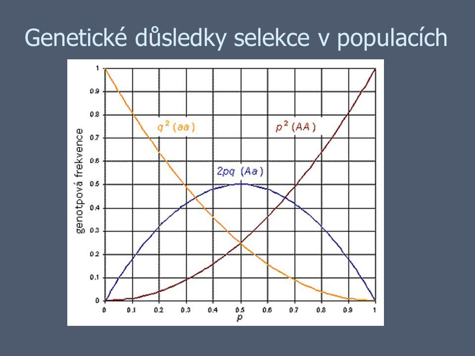 Genetické důsledky selekce v populacích