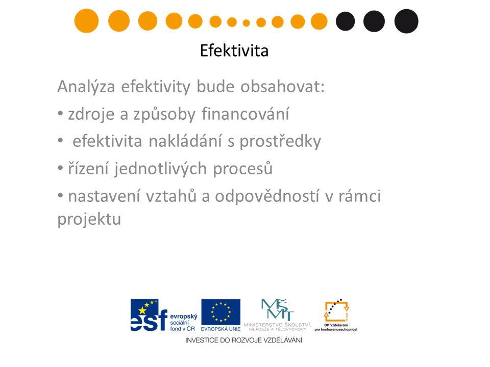 Analýza efektivity bude obsahovat: zdroje a způsoby financování efektivita nakládání s prostředky řízení jednotlivých procesů nastavení vztahů a odpovědností v rámci projektu Efektivita