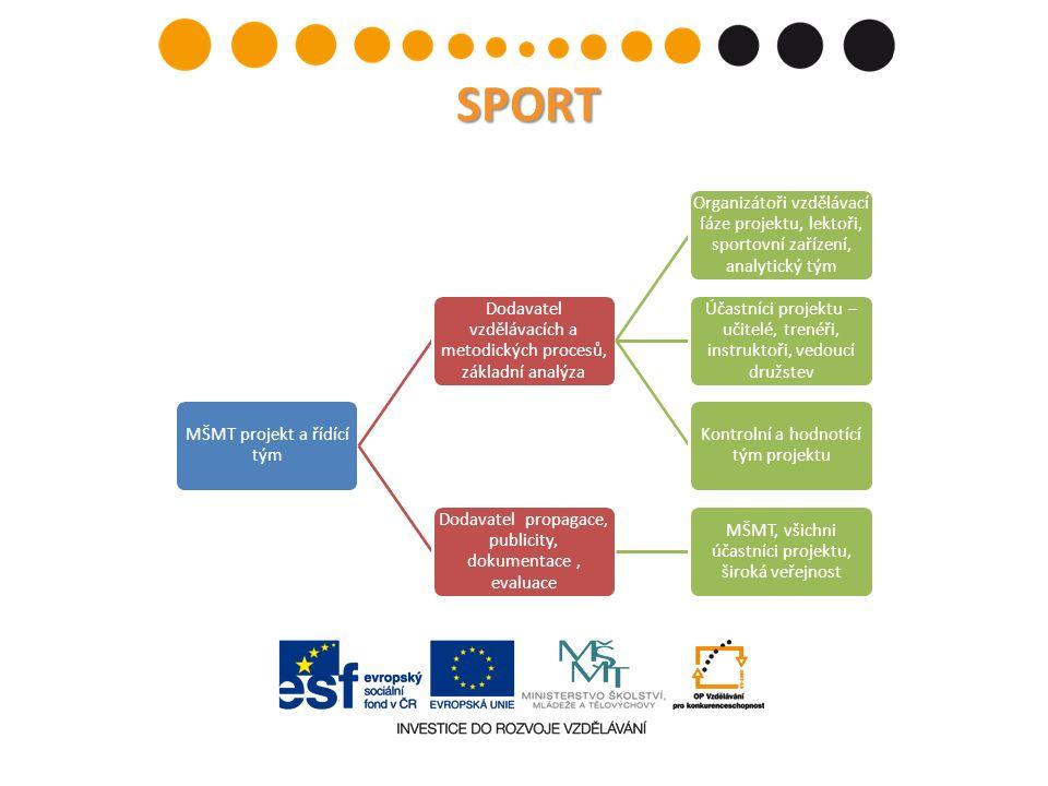 Analýza zohlední: Aktuální stav lidských zdrojů v oblasti práce s mládeží ve sportu a tělesné výchově Zmapuje nejvyšší vzdělání aktuálně pracujících s mládeží v oblasti sportu a tělovýchovy Porovná ty s nejvyšším sportovním a tělovýchovným vzděláním pracujícím v oboru a mimo obor Současnost