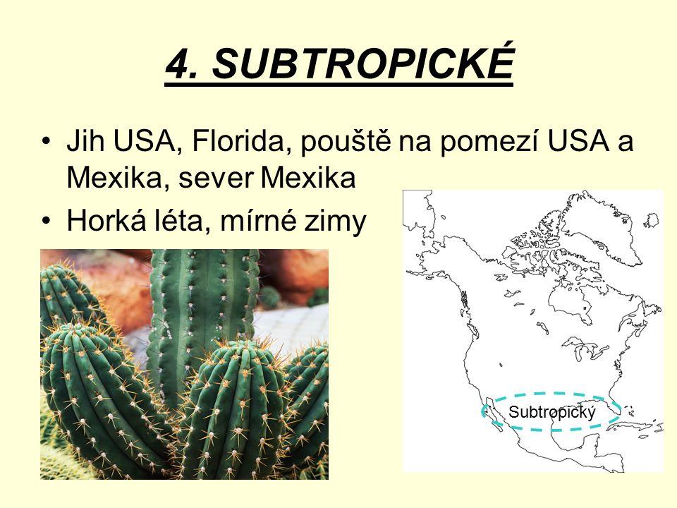 4. SUBTROPICKÉ Jih USA, Florida, pouště na pomezí USA a Mexika, sever Mexika Horká léta, mírné zimy Subtropický
