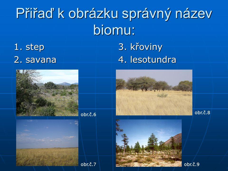 Přiřaď k obrázku správný název biomu: 1. step 2. savana 3.