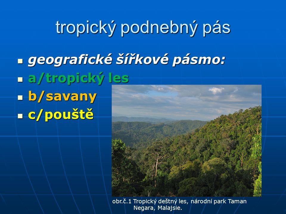 tropický podnebný pás geografické šířkové pásmo: geografické šířkové pásmo: a/tropický les a/tropický les b/savany b/savany c/pouště c/pouště obr.č.1 Tropický deštný les, národní park Taman Negara, Malajsie.