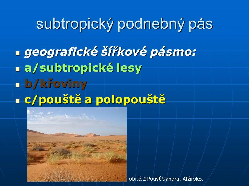 subtropický podnebný pás geografické šířkové pásmo: geografické šířkové pásmo: a/subtropické lesy a/subtropické lesy b/křoviny b/křoviny c/pouště a polopouště c/pouště a polopouště obr.č.2 Poušť Sahara, Alžírsko.