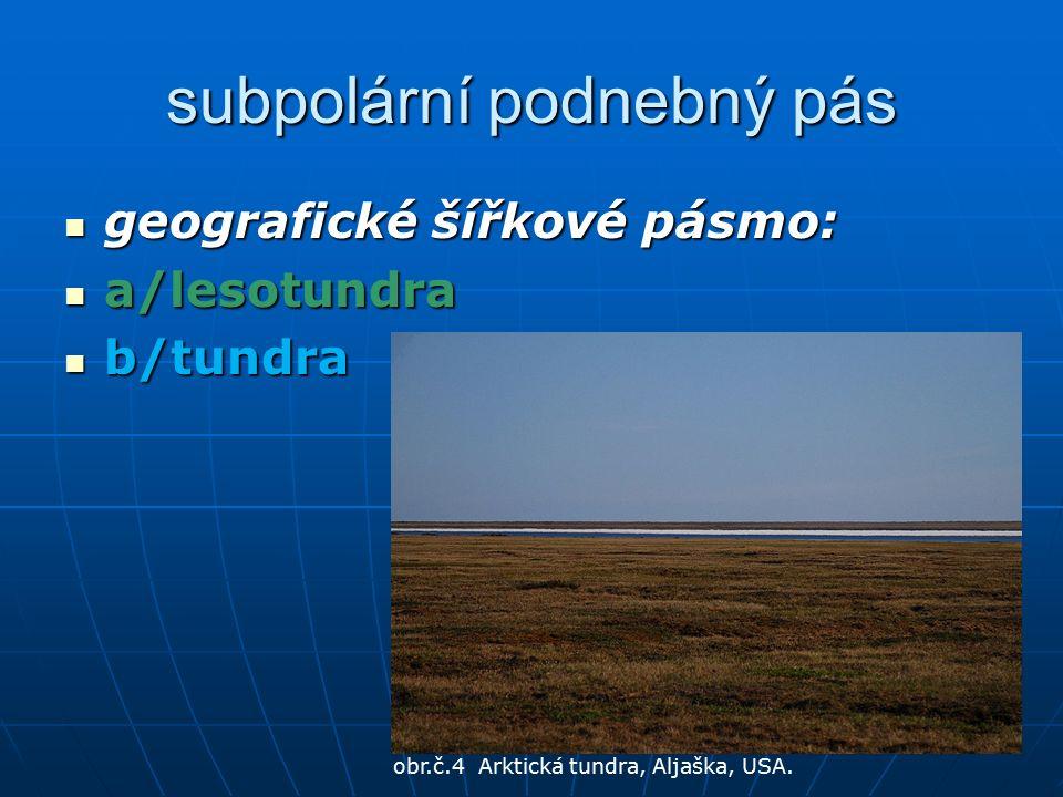 subpolární podnebný pás geografické šířkové pásmo: geografické šířkové pásmo: a/lesotundra a/lesotundra b/tundra b/tundra obr.č.4 Arktická tundra, Aljaška, USA.