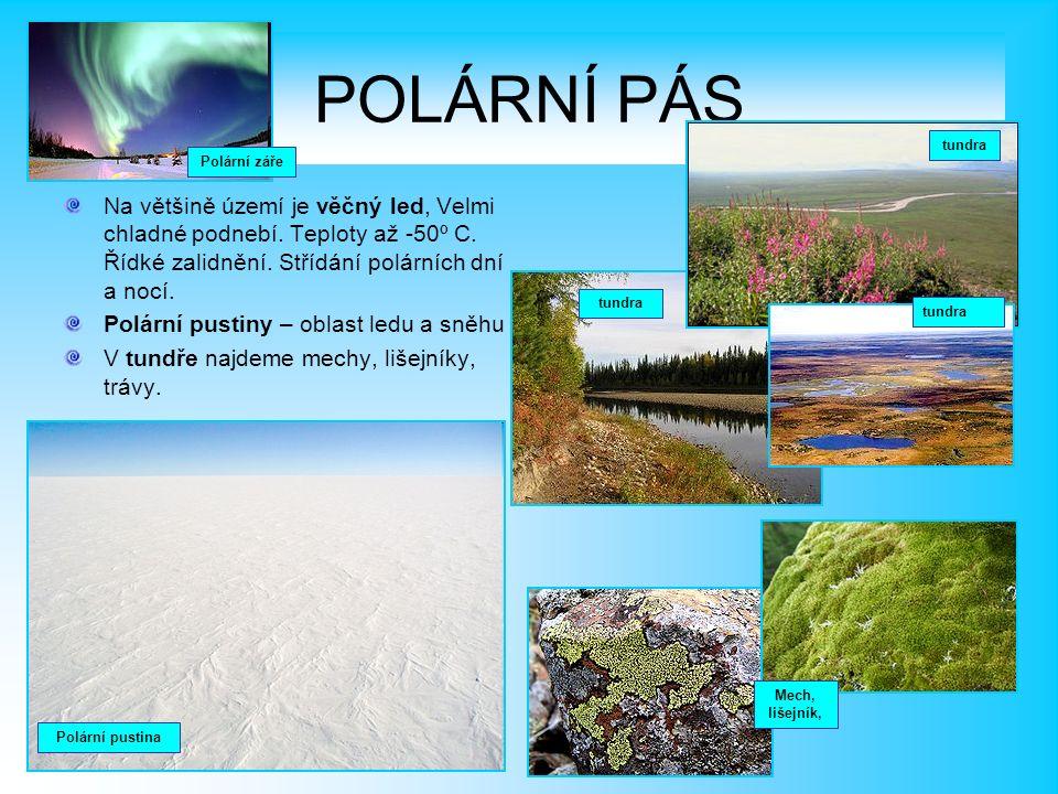 POLÁRNÍ PÁS Na většině území je věčný led, Velmi chladné podnebí.