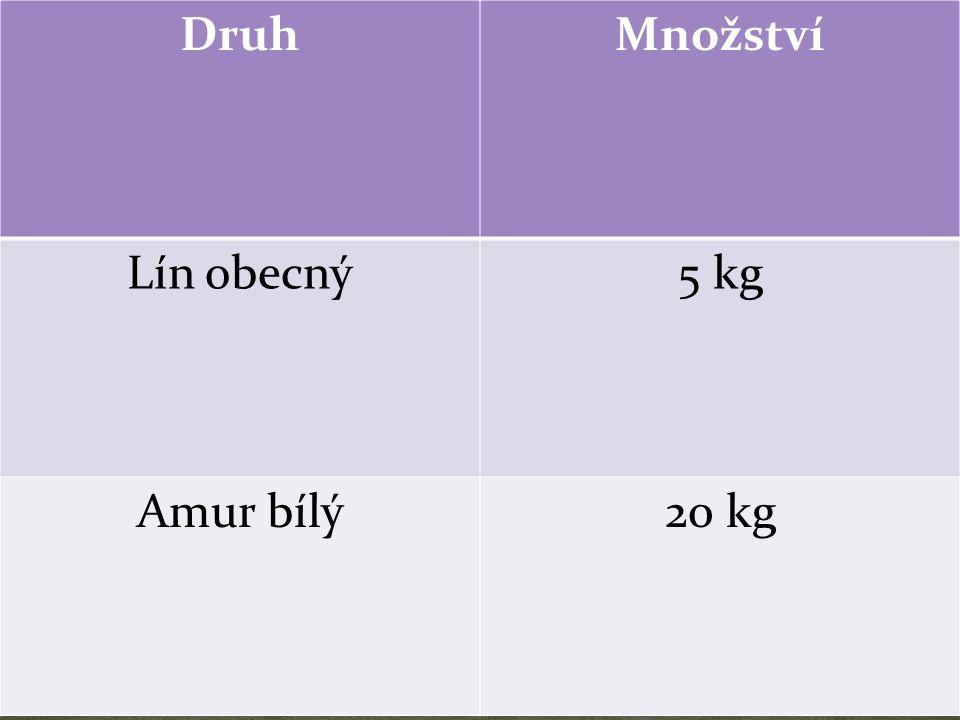 DruhMnožství Lín obecný5 kg Amur bílý20 kg