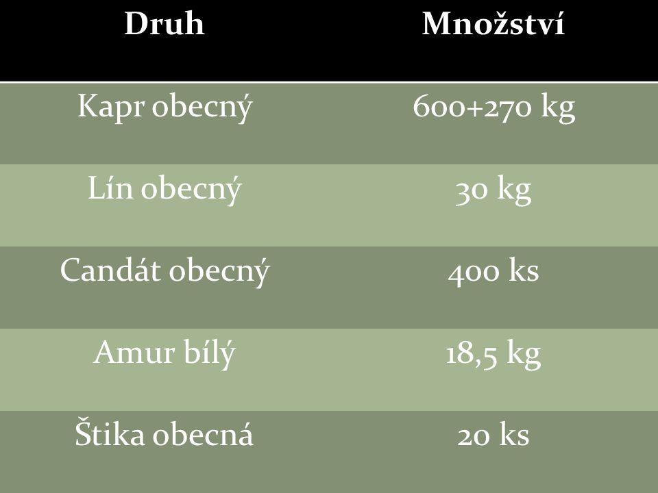 DruhMnožství Kapr obecný600+270 kg Lín obecný30 kg Candát obecný400 ks Amur bílý18,5 kg Štika obecná20 ks