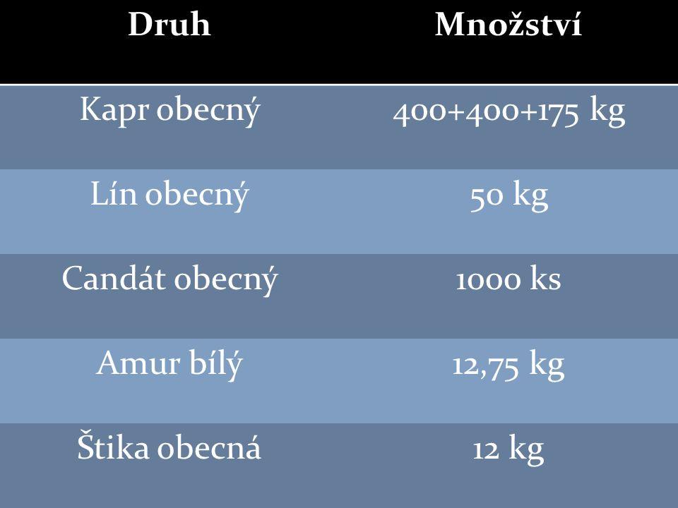 DruhMnožství Kapr obecný400+400+175 kg Lín obecný50 kg Candát obecný1000 ks Amur bílý12,75 kg Štika obecná12 kg