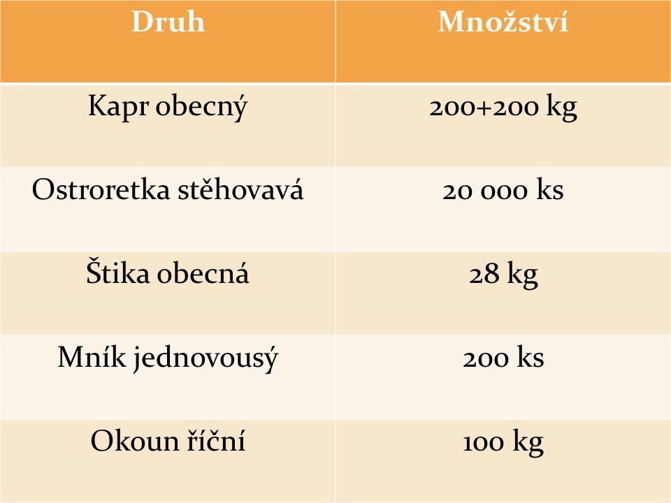 DruhMnožství Kapr obecný200+200 kg Ostroretka stěhovavá20 000 ks Štika obecná28 kg Mník jednovousý200 ks Okoun říční100 kg