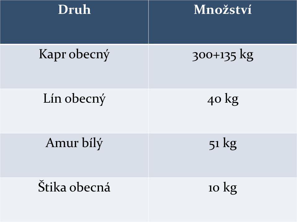 DruhMnožství Kapr obecný300+135 kg Lín obecný40 kg Amur bílý51 kg Štika obecná10 kg