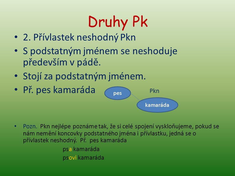 Druhy Pk 2. Přívlastek neshodný Pkn S podstatným jménem se neshoduje především v pádě.