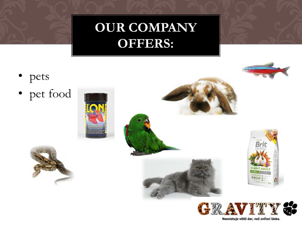 pets pet food OUR COMPANY OFFERS: