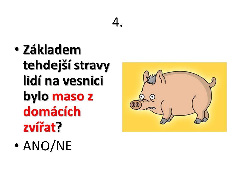 4. Základem tehdejší stravy lidí na vesnici bylo maso z domácích zvířat? Základem tehdejší stravy lidí na vesnici bylo maso z domácích zvířat? ANO/NE