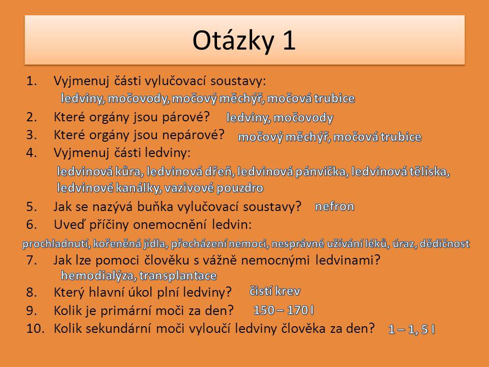 Otázky 1 1.Vyjmenuj části vylučovací soustavy: 2.Které orgány jsou párové.