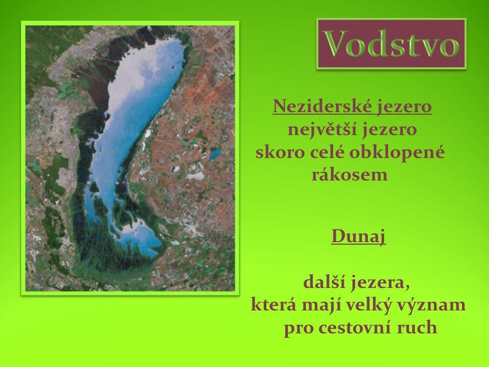 Neziderské jezero největší jezero skoro celé obklopené rákosem Dunaj další jezera, která mají velký význam pro cestovní ruch