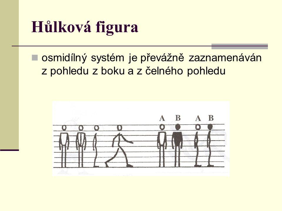 Hůlková figura osmidílný systém je převážně zaznamenáván z pohledu z boku a z čelného pohledu