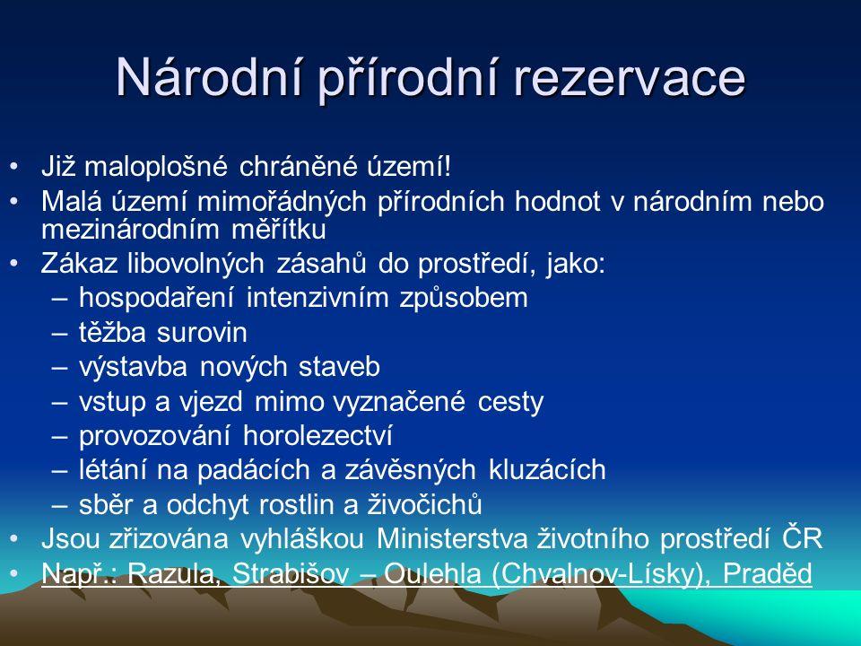 Přírodní rezervace Menší území soustředěných přírodních hodnot Ochrana vzácného a regionálně významného biotopu (např.