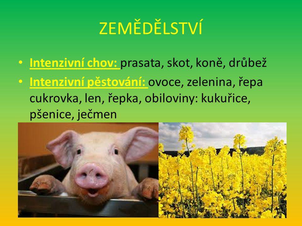 ZEMĚDĚLSTVÍ Intenzivní chov: prasata, skot, koně, drůbež Intenzivní pěstování: ovoce, zelenina, řepa cukrovka, len, řepka, obiloviny: kukuřice, pšenice, ječmen