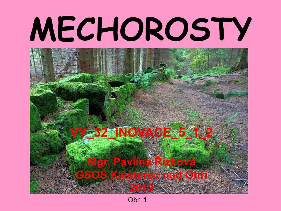 MECHOROSTY Obr. 1 VY_32_INOVACE_5_1_2 Mgr. Pavlína Řízková GSOŠ Klášterec nad Ohří 2012