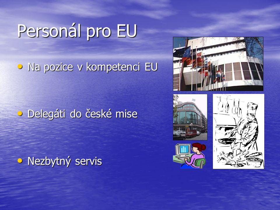 Personál pro EU Na pozice v kompetenci EU Na pozice v kompetenci EU Delegáti do české mise Delegáti do české mise Nezbytný servis Nezbytný servis