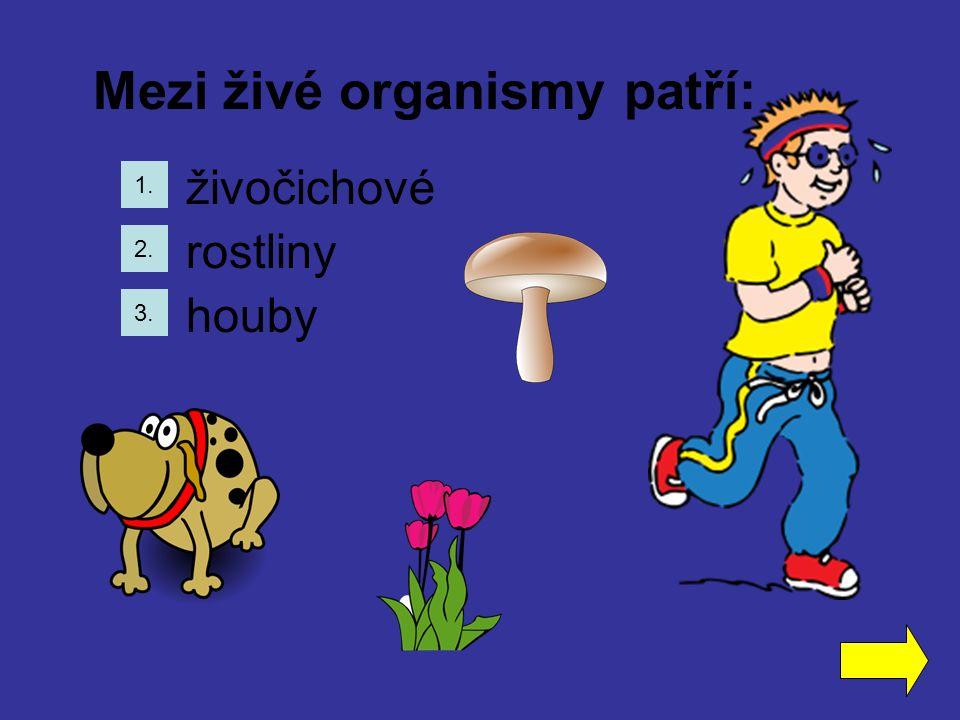 Mezi živé organismy patří: 1. 2. 3. živočichové rostliny houby