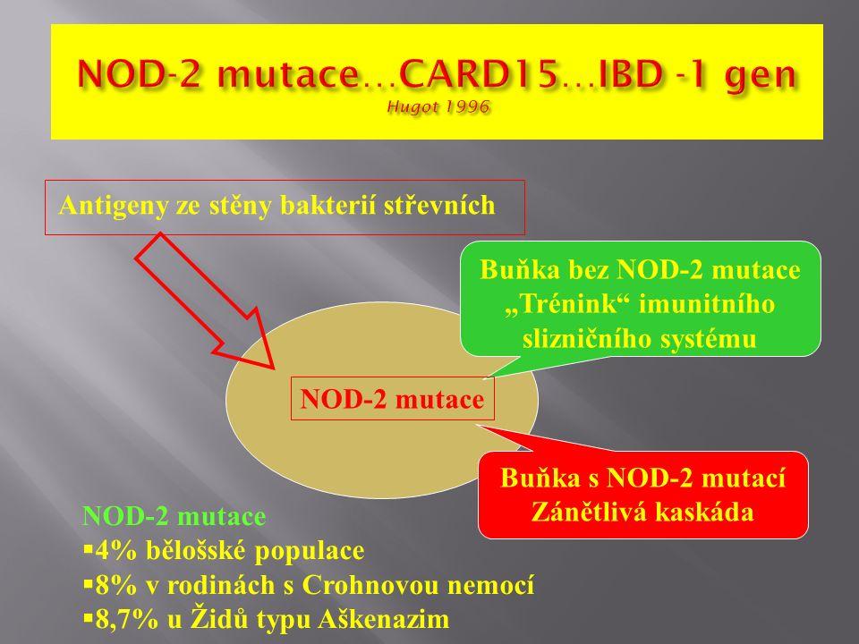 """Antigeny ze stěny bakterií střevních Buňka bez NOD-2 mutace """"Trénink imunitního slizničního systému Buňka s NOD-2 mutací Zánětlivá kaskáda NOD-2 mutace  4% bělošské populace  8% v rodinách s Crohnovou nemocí  8,7% u Židů typu Aškenazim"""