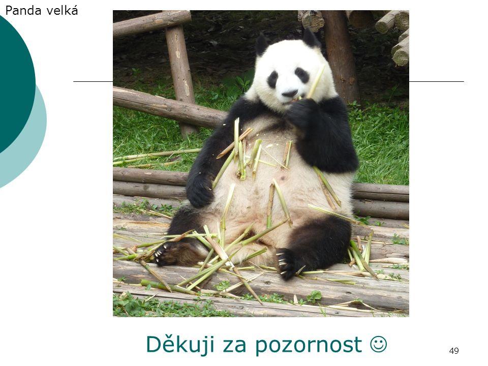 Děkuji za pozornost Panda velká 49