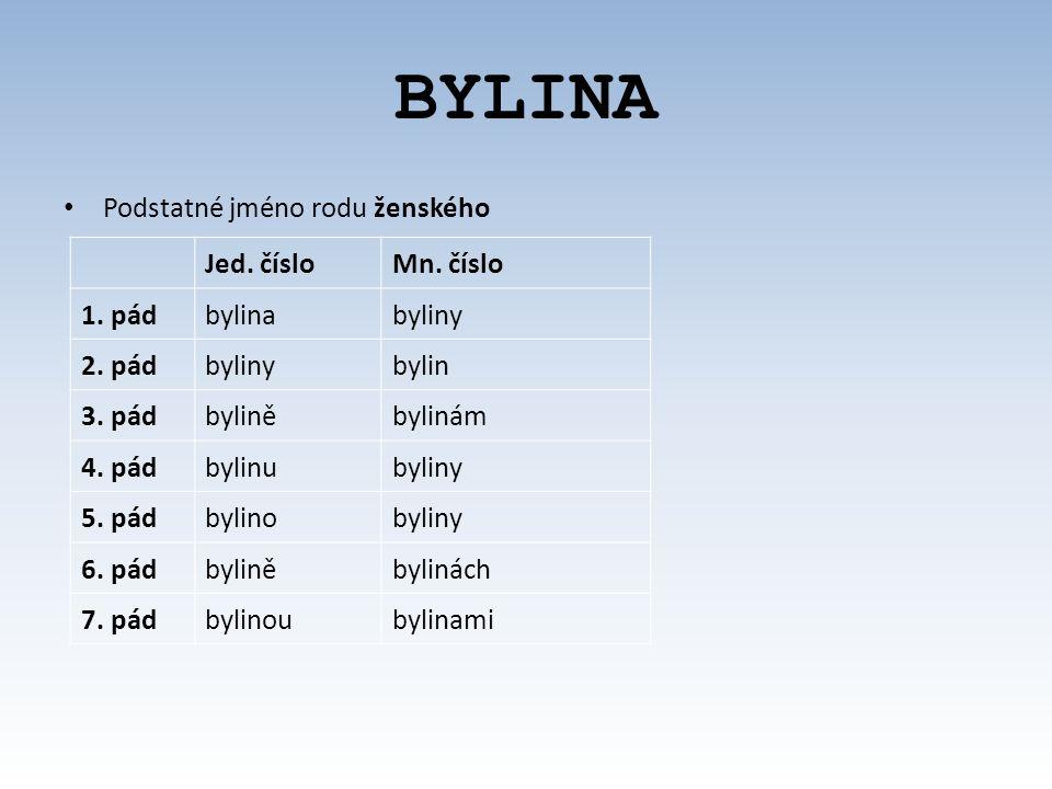 BYLINA Podstatné jméno rodu ženského Jed.čísloMn.