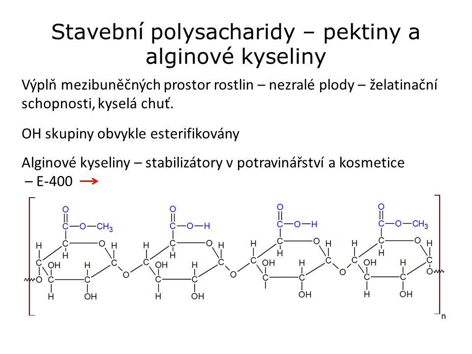 Stavební polysacharidy – pektiny a alginové kyseliny Výplň mezibuněčných prostor rostlin – nezralé plody – želatinační schopnosti, kyselá chuť.
