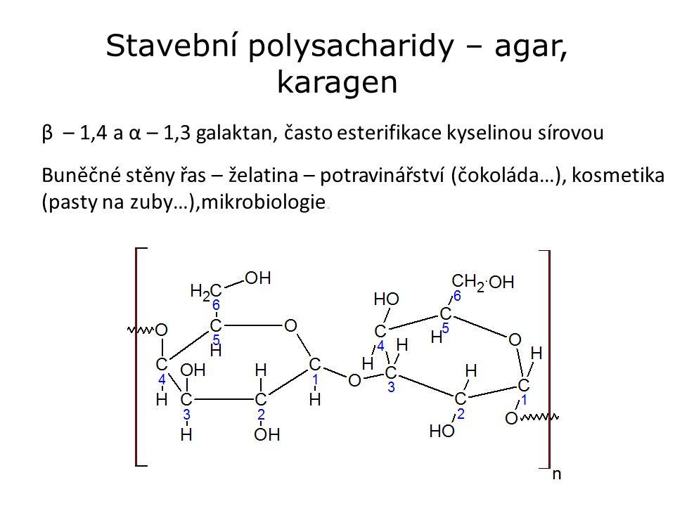Stavební polysacharidy – agar, karagen β – 1,4 a α – 1,3 galaktan, často esterifikace kyselinou sírovou Buněčné stěny řas – želatina – potravinářství (čokoláda…), kosmetika (pasty na zuby…),mikrobiologie.