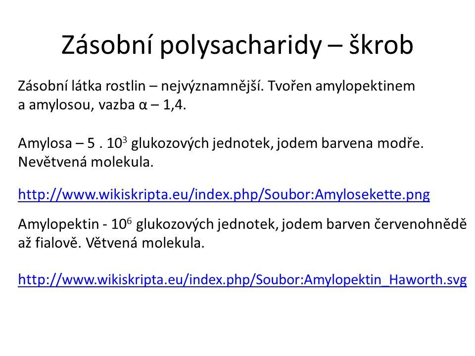 Zásobní polysacharidy – škrob Zásobní látka rostlin – nejvýznamnější.