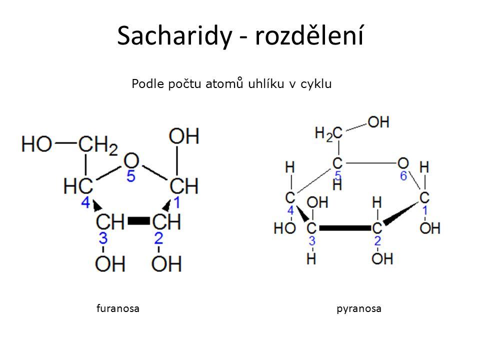 Sacharidy - rozdělení Podle počtu atomů uhlíku v cyklu furanosapyranosa
