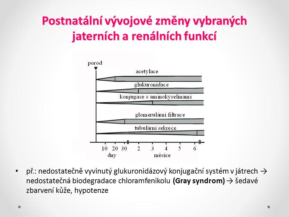 Postnatální vývojové změny vybraných jaterních a renálních funkcí př.: nedostatečně vyvinutý glukuronidázový konjugační systém v játrech → nedostatečn