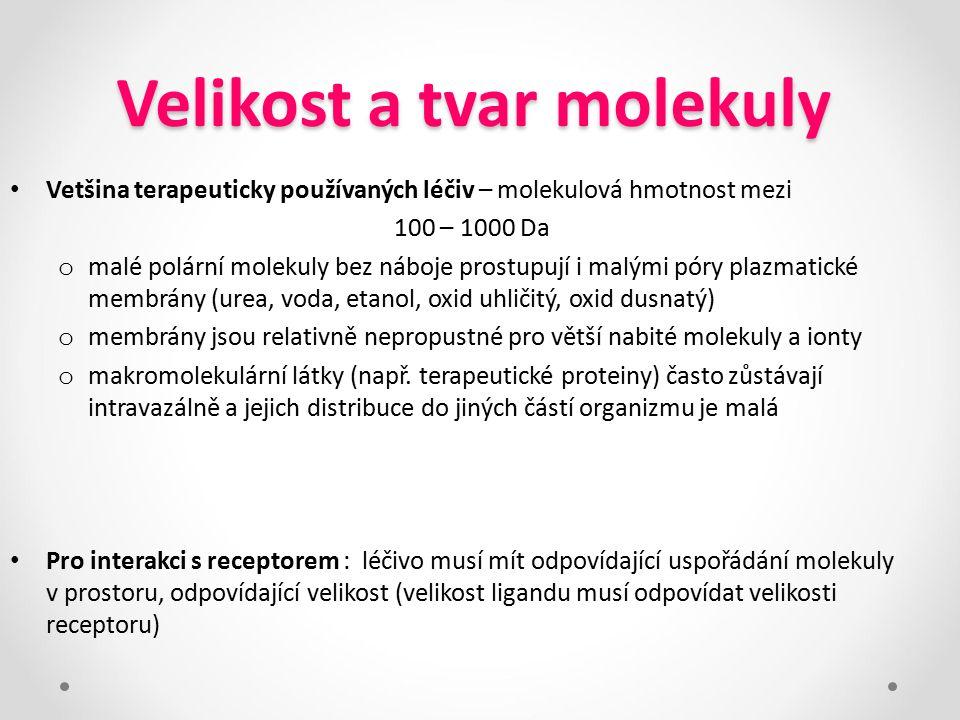 Velikost a tvar molekuly Vetšina terapeuticky používaných léčiv – molekulová hmotnost mezi 100 – 1000 Da o malé polární molekuly bez náboje prostupují