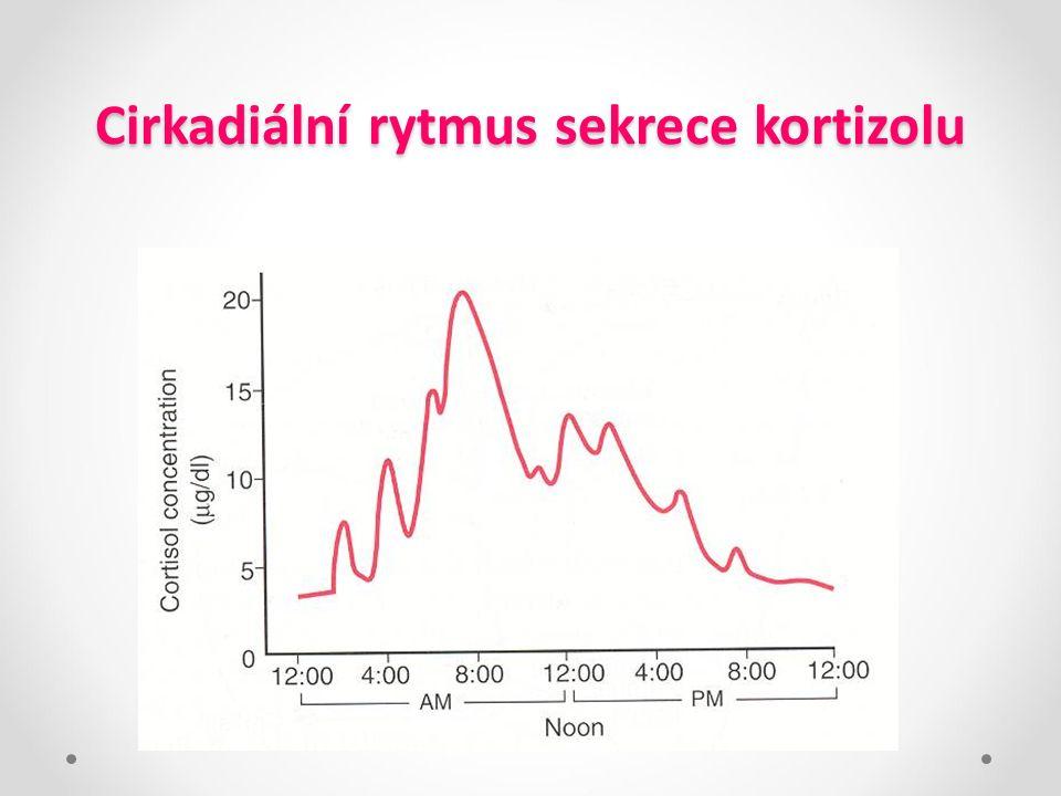 Cirkadiální rytmus sekrece kortizolu