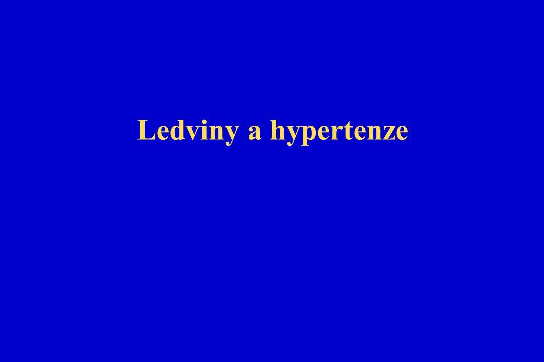 Ledviny a hypertenze