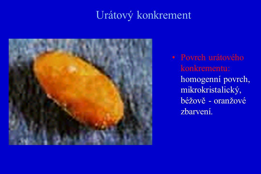 Urátový konkrement Povrch urátového konkrementu: homogenní povrch, mikrokristalický, béžově - oranžové zbarvení.