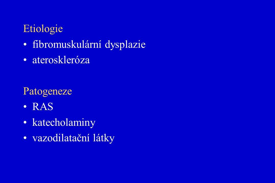Etiologie fibromuskulární dysplazie ateroskleróza Patogeneze RAS katecholaminy vazodilatační látky