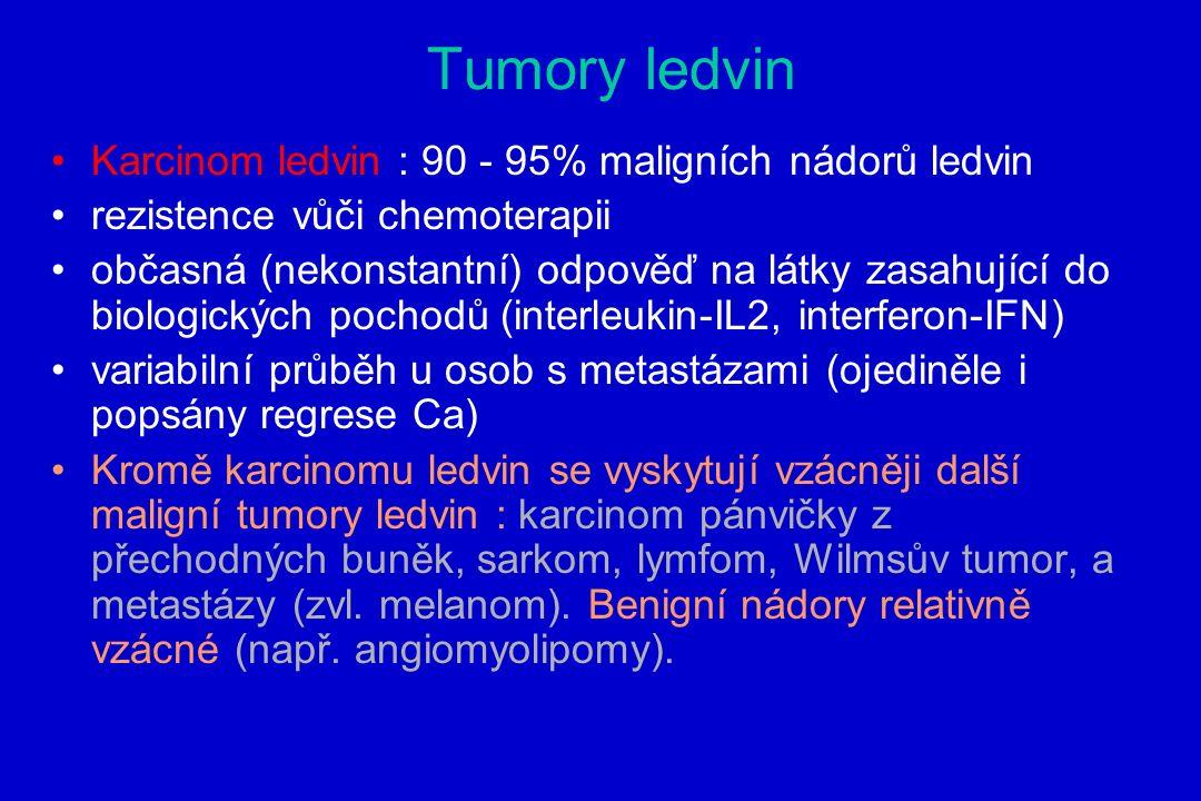 Tumory ledvin Karcinom ledvin : 90 - 95% maligních nádorů ledvin rezistence vůči chemoterapii občasná (nekonstantní) odpověď na látky zasahující do biologických pochodů (interleukin-IL2, interferon-IFN) variabilní průběh u osob s metastázami (ojediněle i popsány regrese Ca) Kromě karcinomu ledvin se vyskytují vzácněji další maligní tumory ledvin : karcinom pánvičky z přechodných buněk, sarkom, lymfom, Wilmsův tumor, a metastázy (zvl.