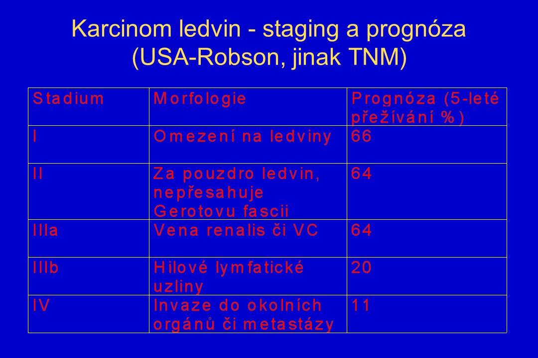 Karcinom ledvin - staging a prognóza (USA-Robson, jinak TNM)